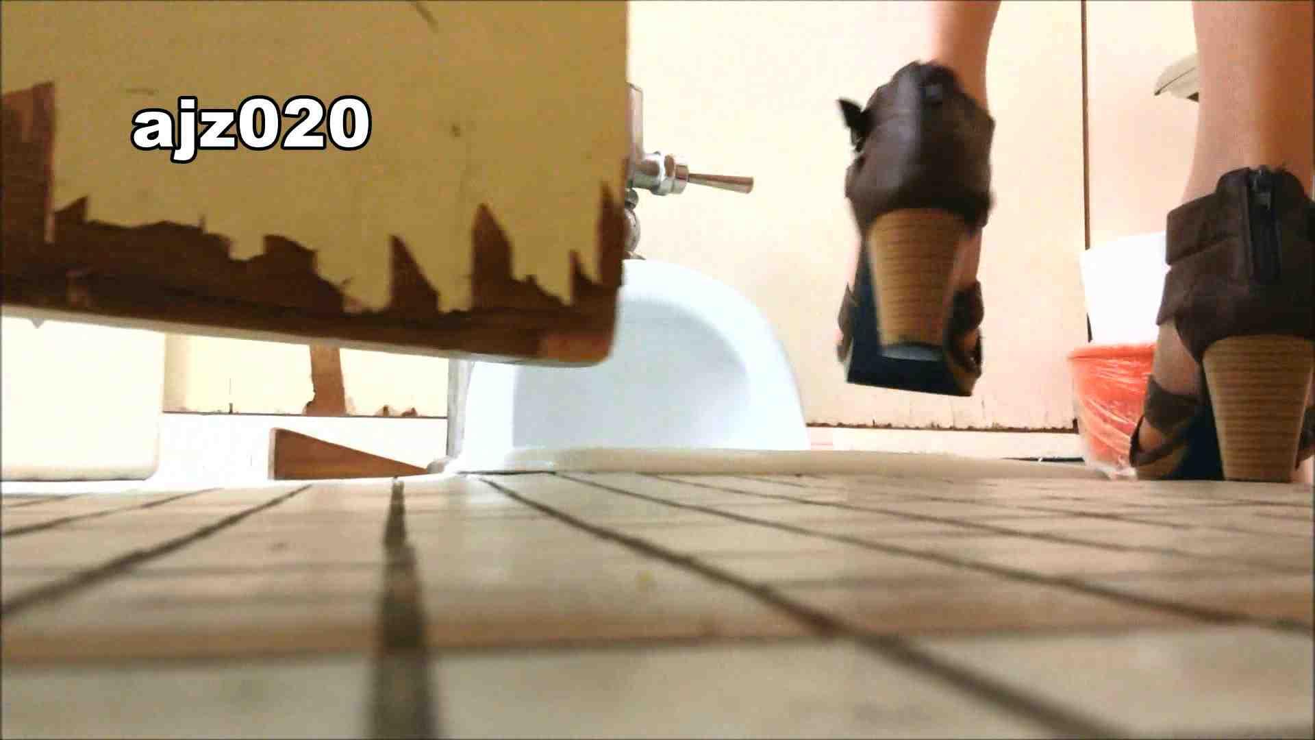 某有名大学女性洗面所 vol.20 洗面所  67Pix 10
