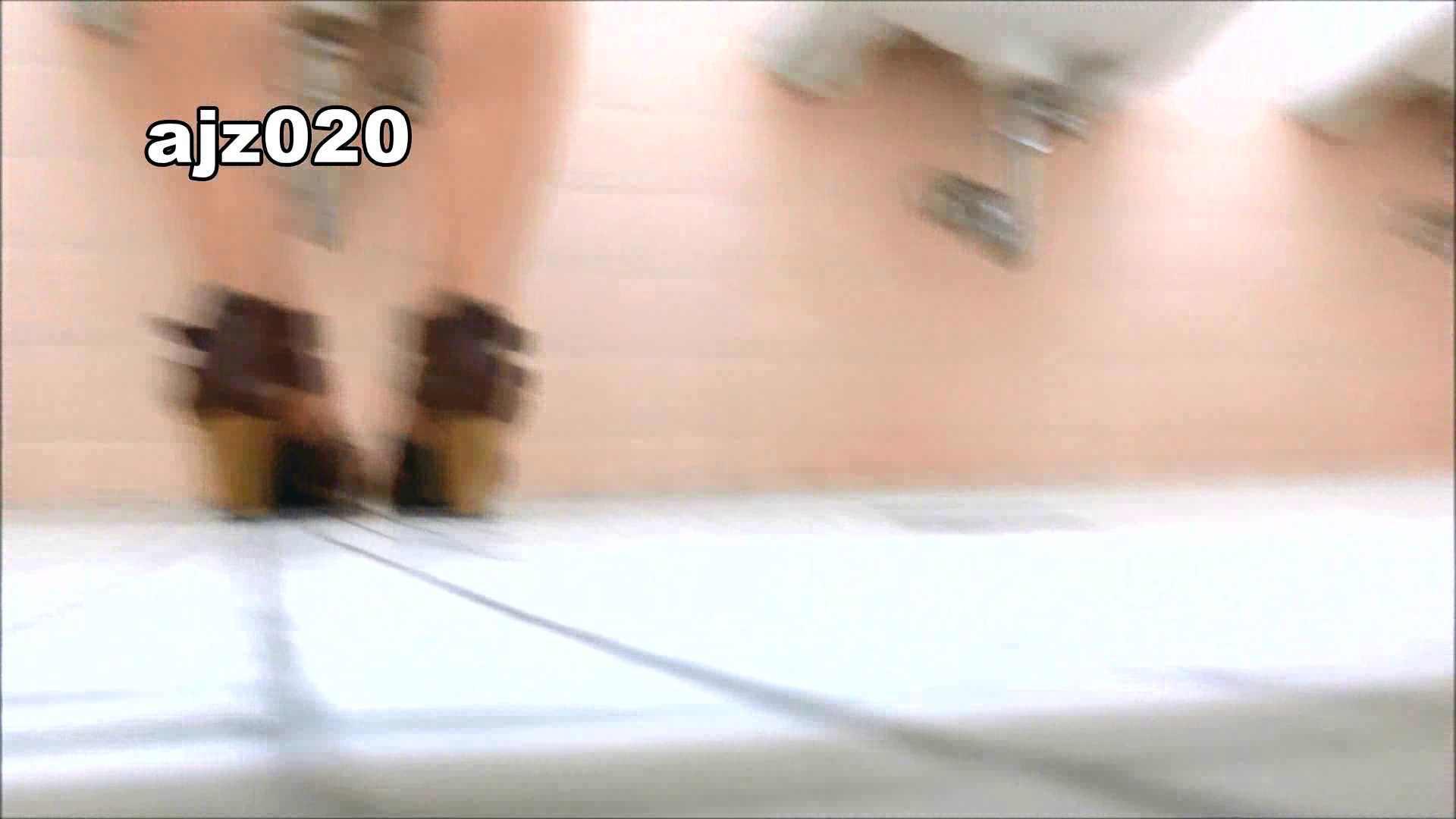 某有名大学女性洗面所 vol.20 洗面所  67Pix 19