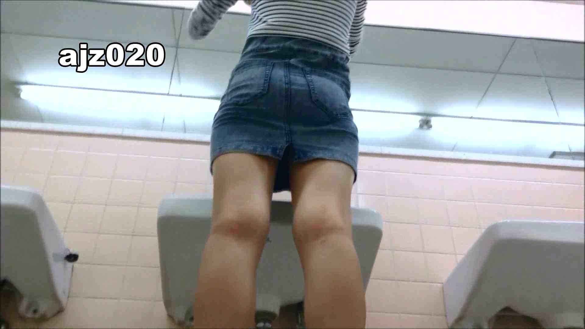 某有名大学女性洗面所 vol.20 洗面所  67Pix 21