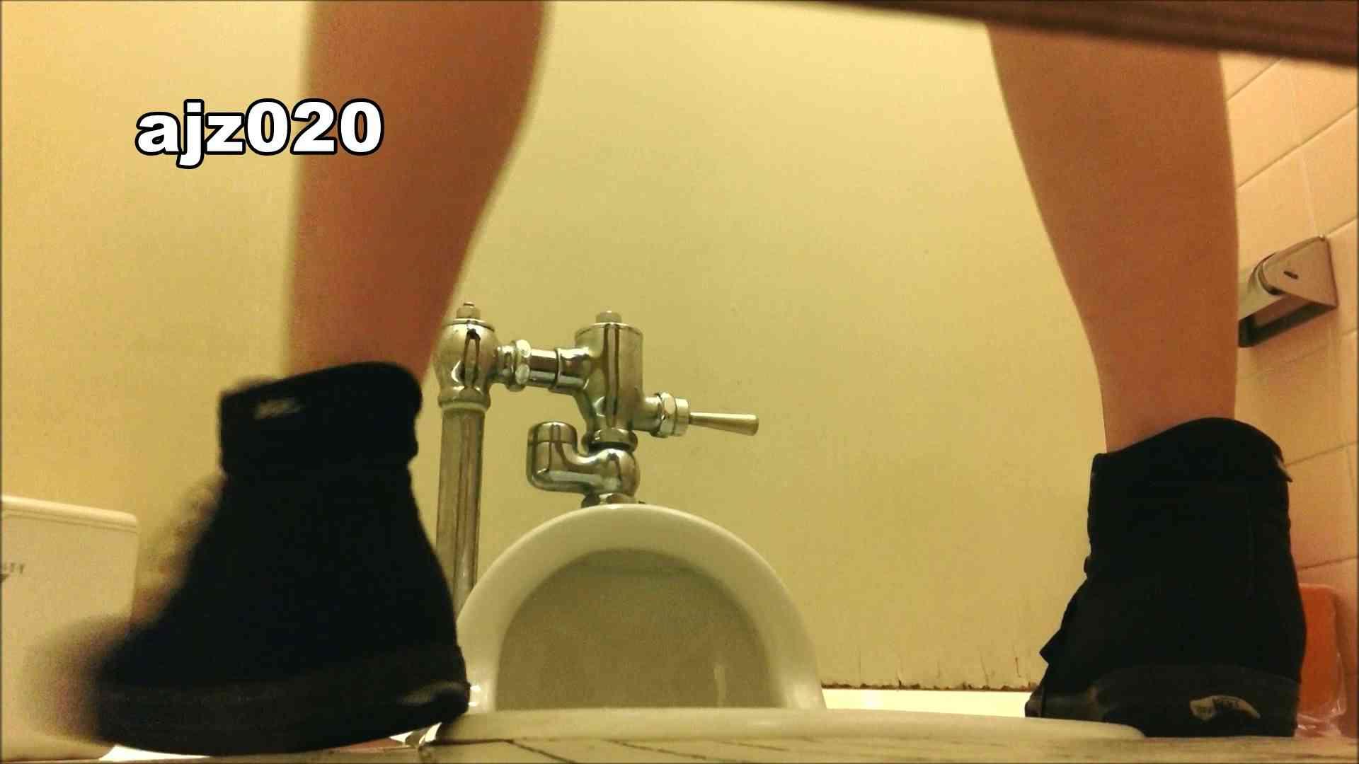 某有名大学女性洗面所 vol.20 洗面所  67Pix 40