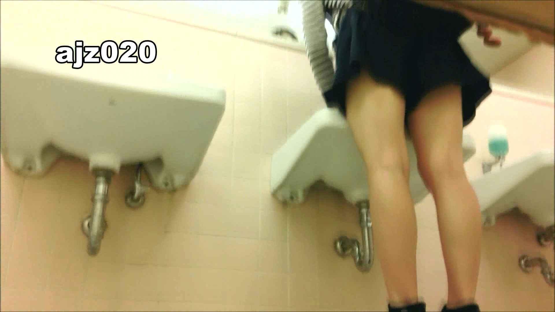 某有名大学女性洗面所 vol.20 洗面所  67Pix 41