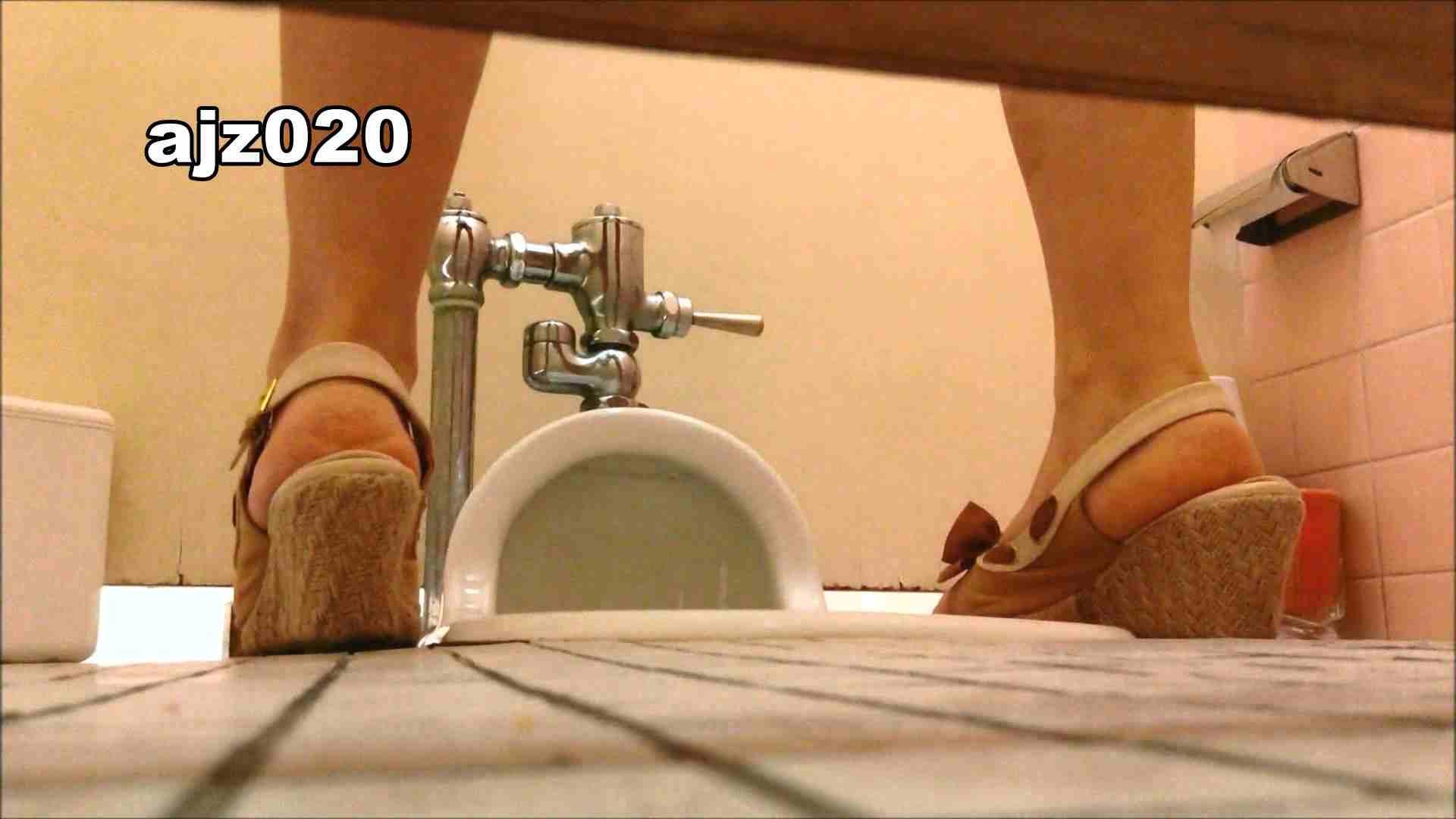 某有名大学女性洗面所 vol.20 洗面所  67Pix 45