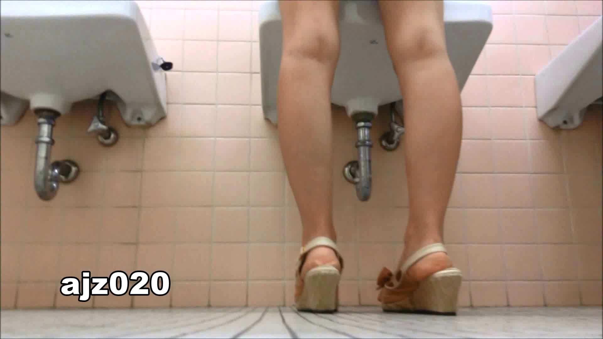 某有名大学女性洗面所 vol.20 洗面所  67Pix 54