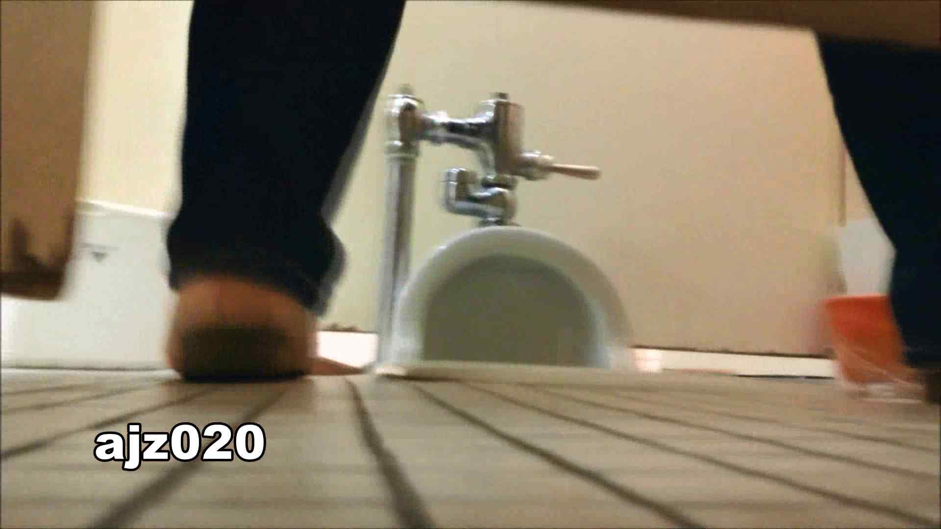 某有名大学女性洗面所 vol.20 洗面所  67Pix 55