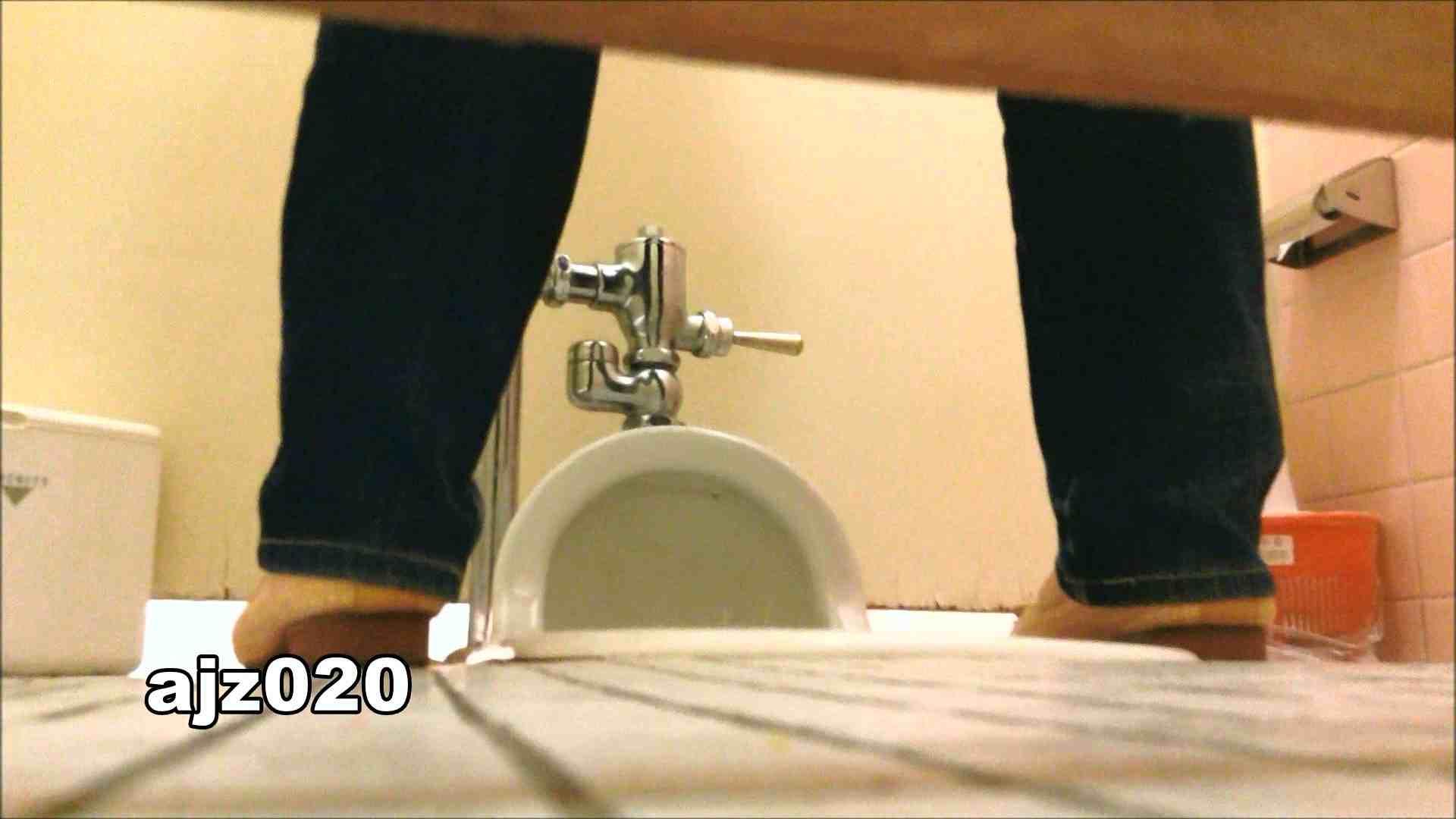 某有名大学女性洗面所 vol.20 洗面所  67Pix 57