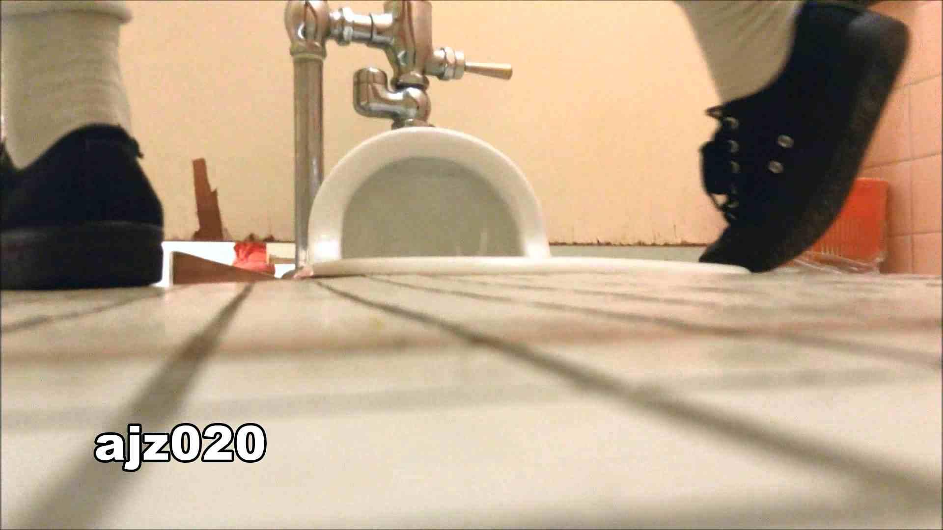 某有名大学女性洗面所 vol.20 洗面所  67Pix 64