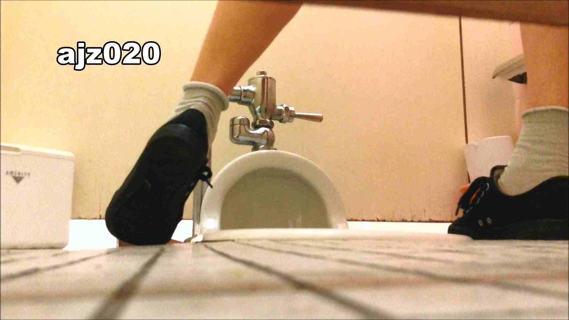 某有名大学女性洗面所 vol.20 洗面所  67Pix 65