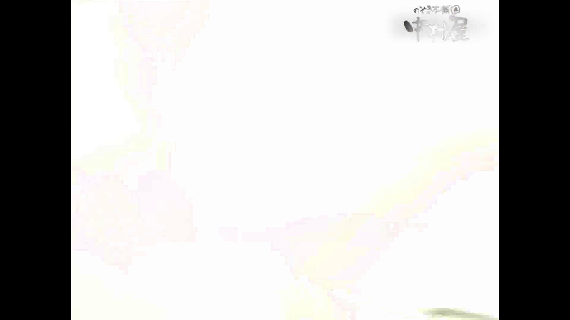 岩手県在住盗撮師盗撮記録vol.23 お姉さんハメ撮り  47Pix 42