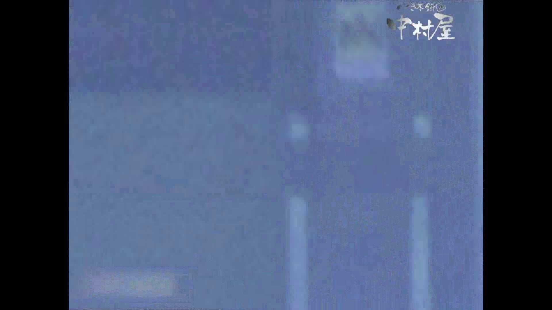 岩手県在住盗撮師盗撮記録vol.44 OLハメ撮り  59Pix 7