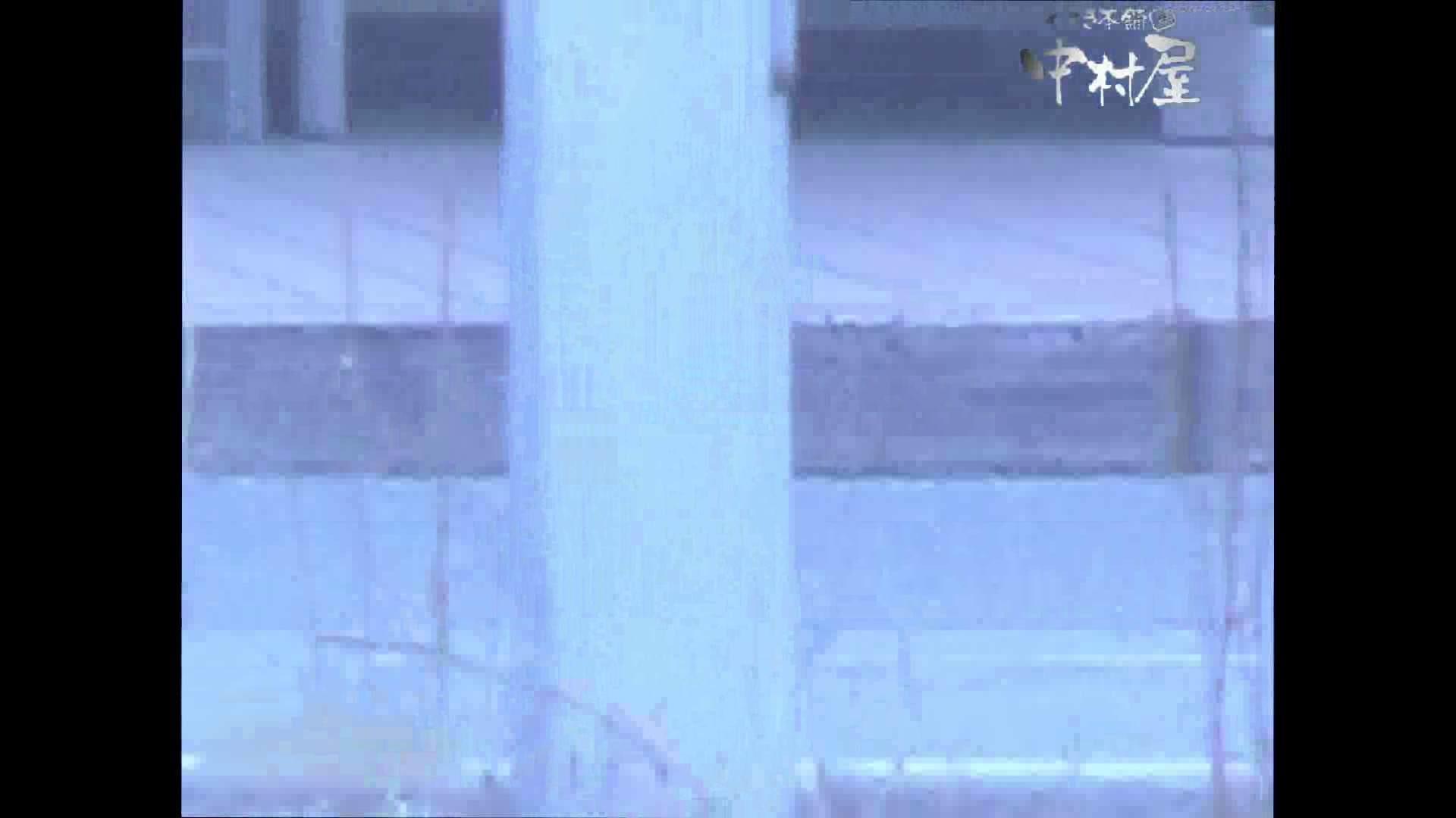 岩手県在住盗撮師盗撮記録vol.44 OLハメ撮り  59Pix 56