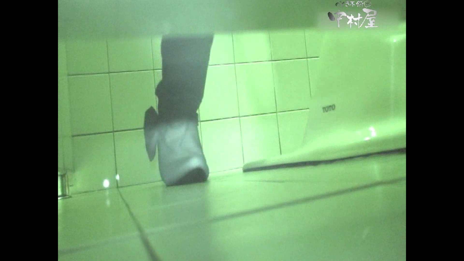 岩手県在住盗撮師盗撮記録vol.31 OLハメ撮り  59Pix 32