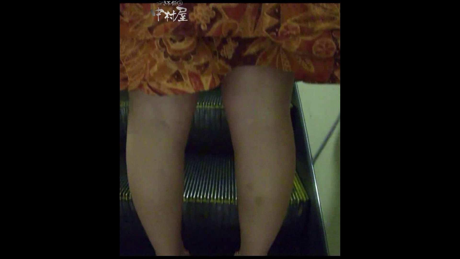 綺麗なモデルさんのスカート捲っちゃおう‼ vol13 OLハメ撮り  45Pix 42