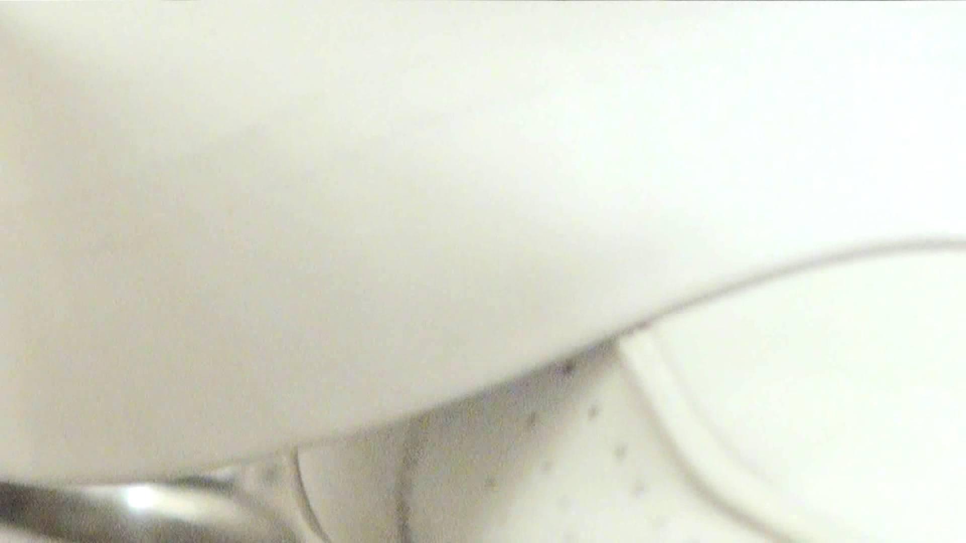 ナースのお小水 vol.005 ナースハメ撮り  110Pix 18