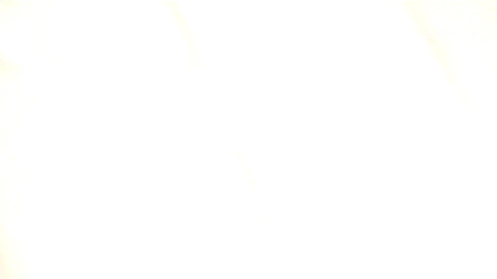 ナースのお小水 vol.005 ナースハメ撮り  110Pix 45