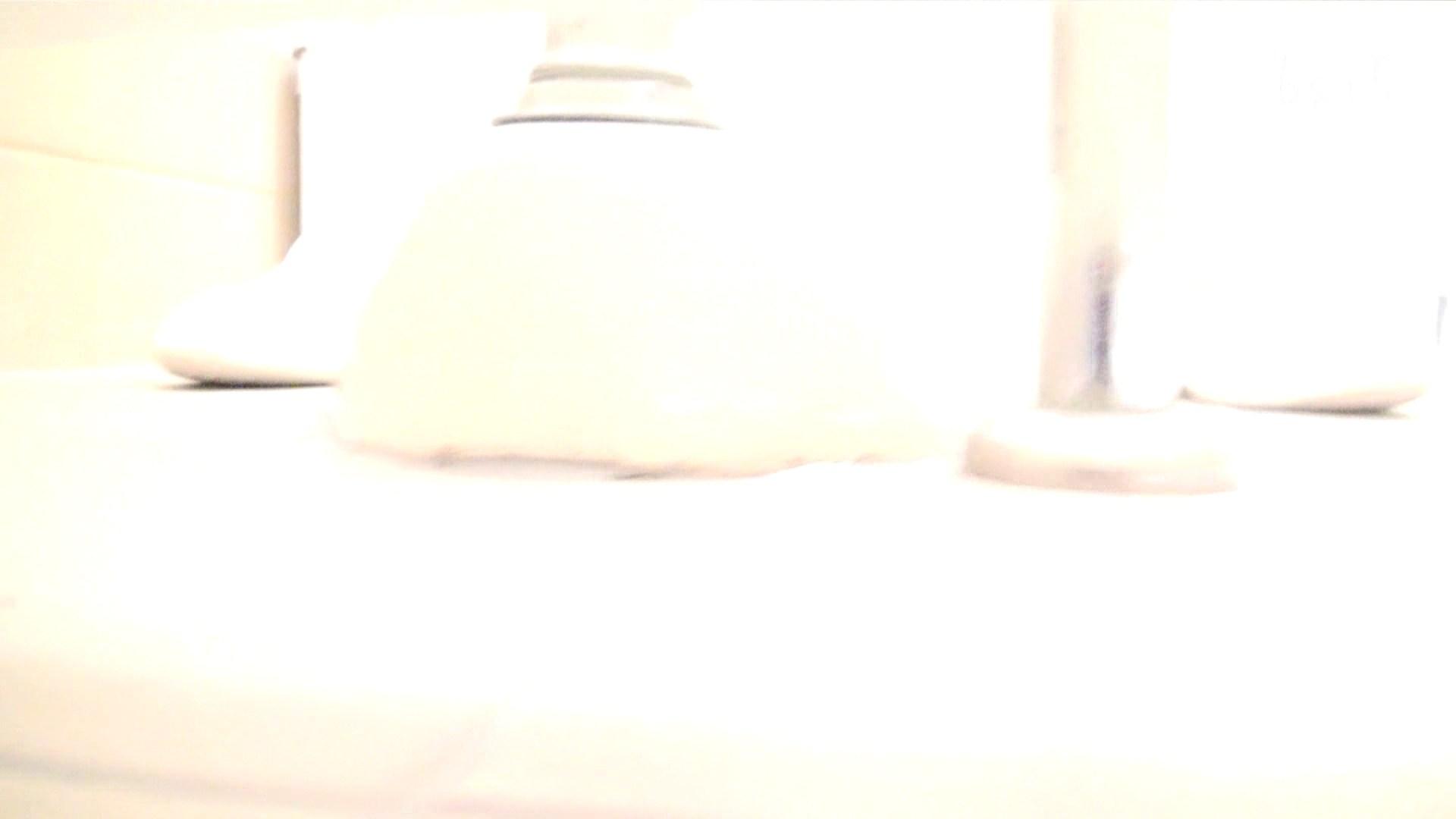ナースのお小水 vol.005 ナースハメ撮り  110Pix 58