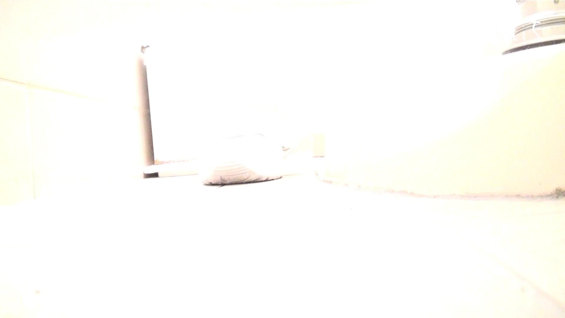 ナースのお小水 vol.005 ナースハメ撮り  110Pix 69