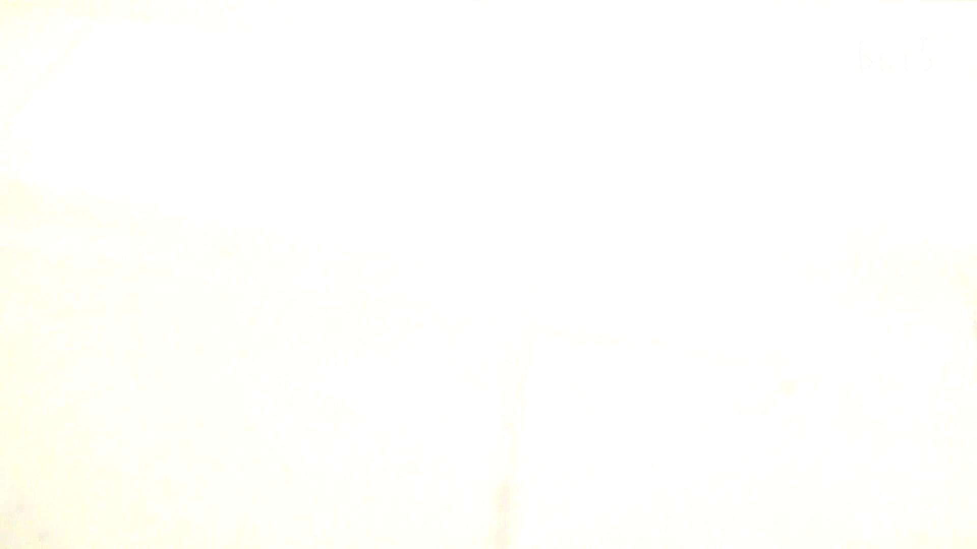 ナースのお小水 vol.005 ナースハメ撮り  110Pix 87