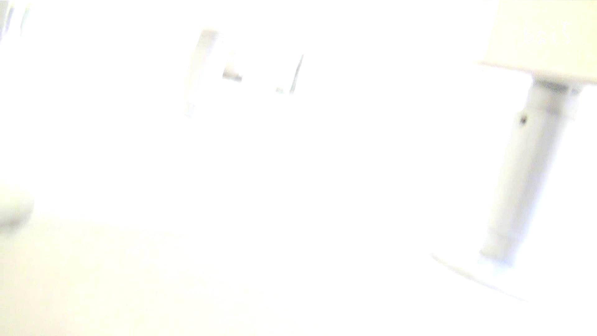 ナースのお小水 vol.005 ナースハメ撮り  110Pix 95
