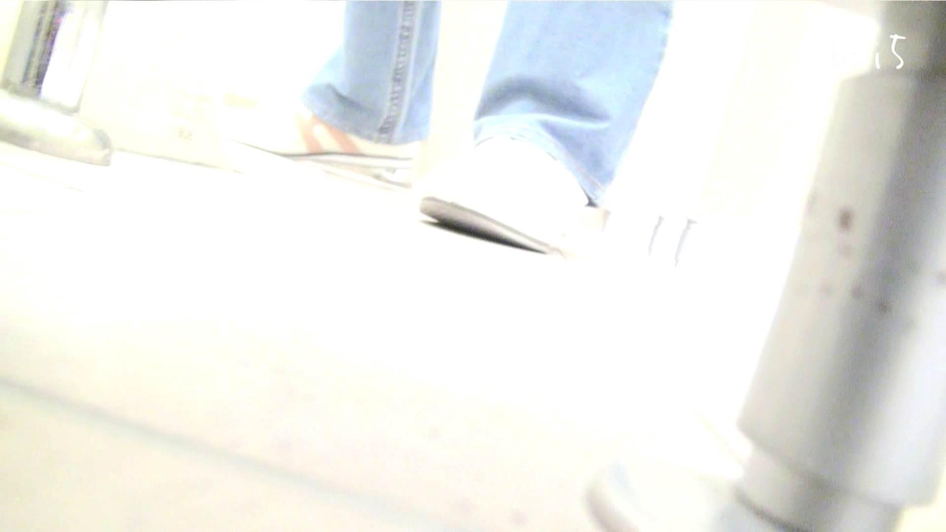 ナースのお小水 vol.005 ナースハメ撮り  110Pix 101
