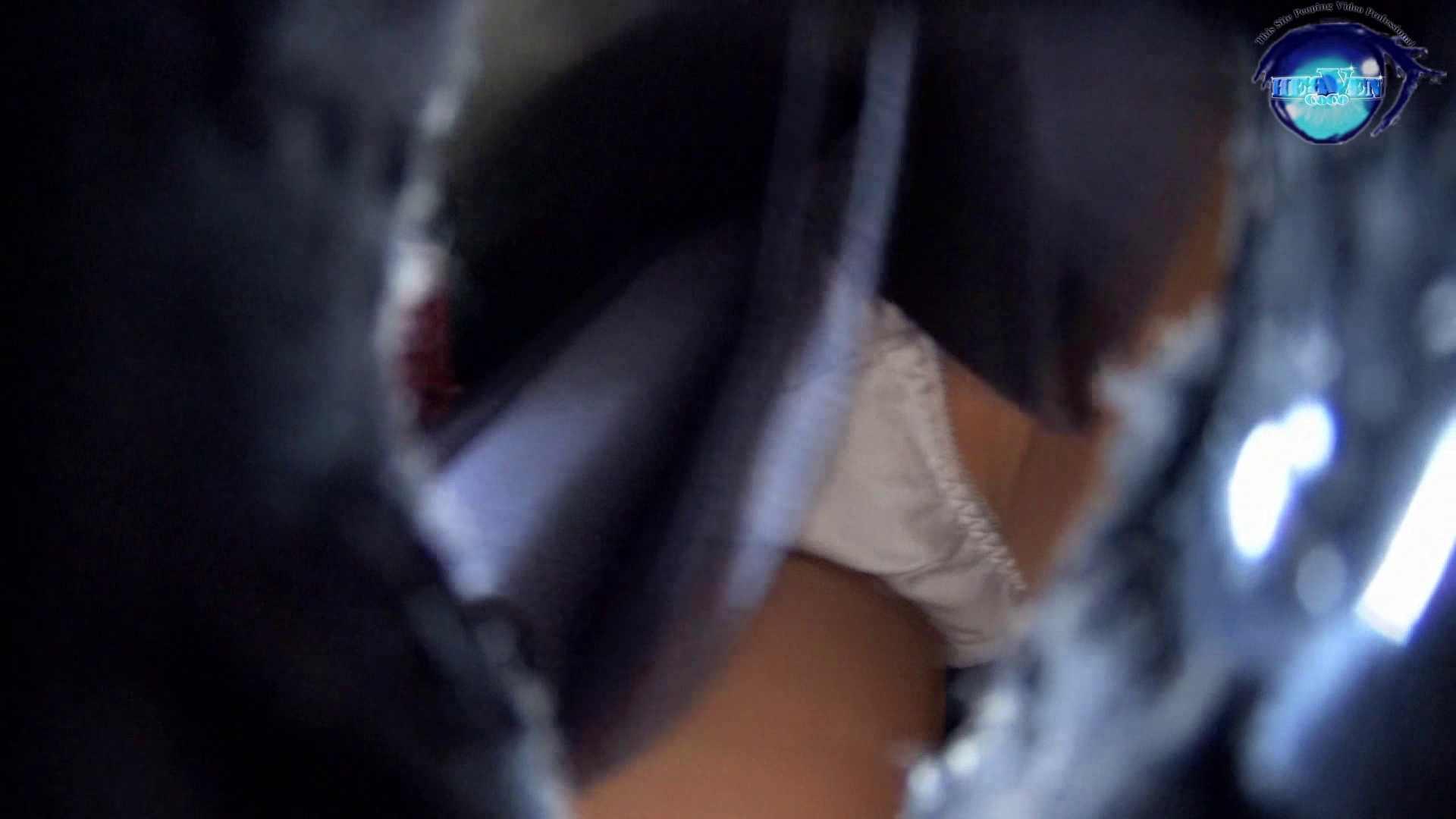 雅さんの独断と偏見で集めた動画 パンチラ編vol.01 OLハメ撮り  106Pix 18