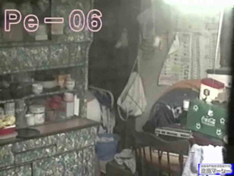 丸秘盗撮 隣の民家vol.6 OLハメ撮り  97Pix 79