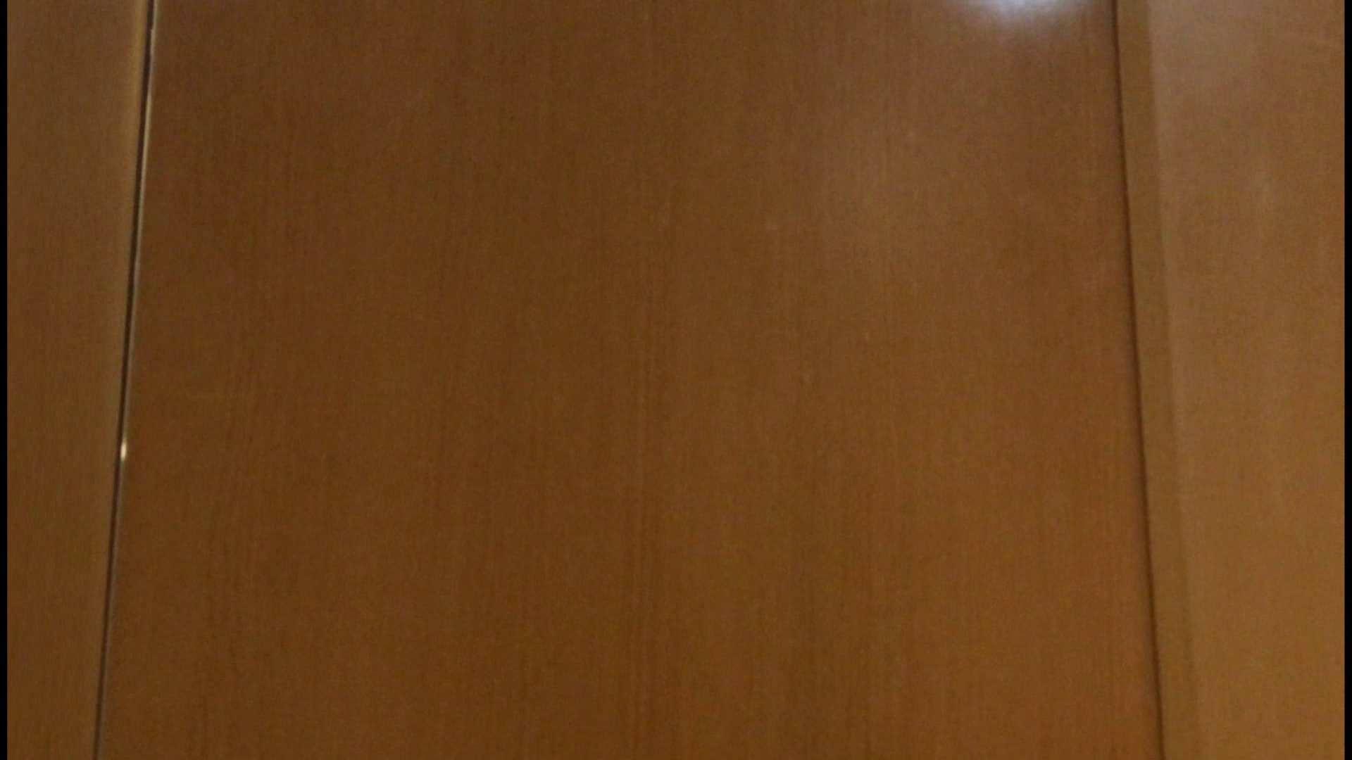 「噂」の国の厠観察日記2 Vol.08 OLハメ撮り  111Pix 15