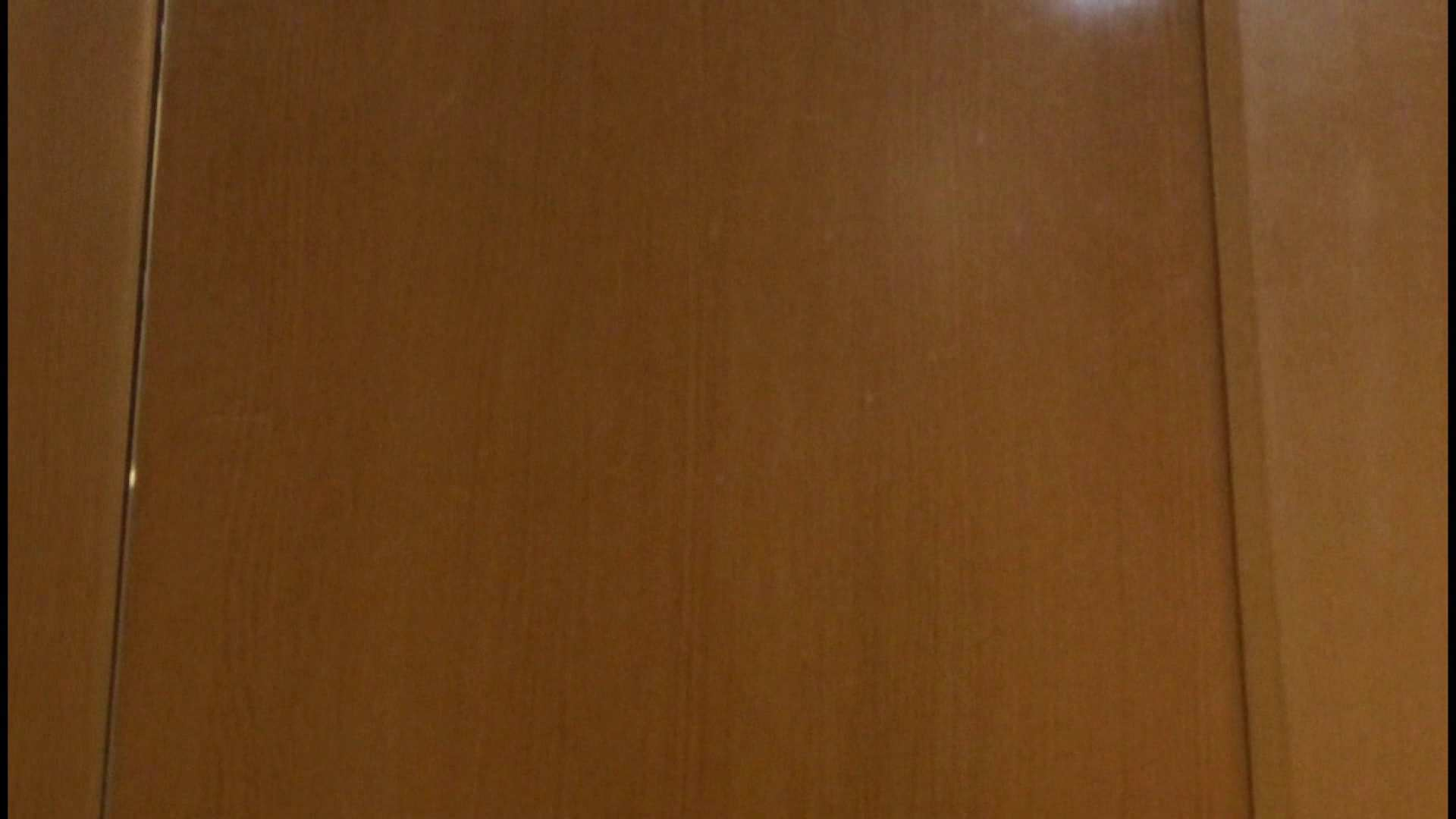 「噂」の国の厠観察日記2 Vol.08 OLハメ撮り  111Pix 18