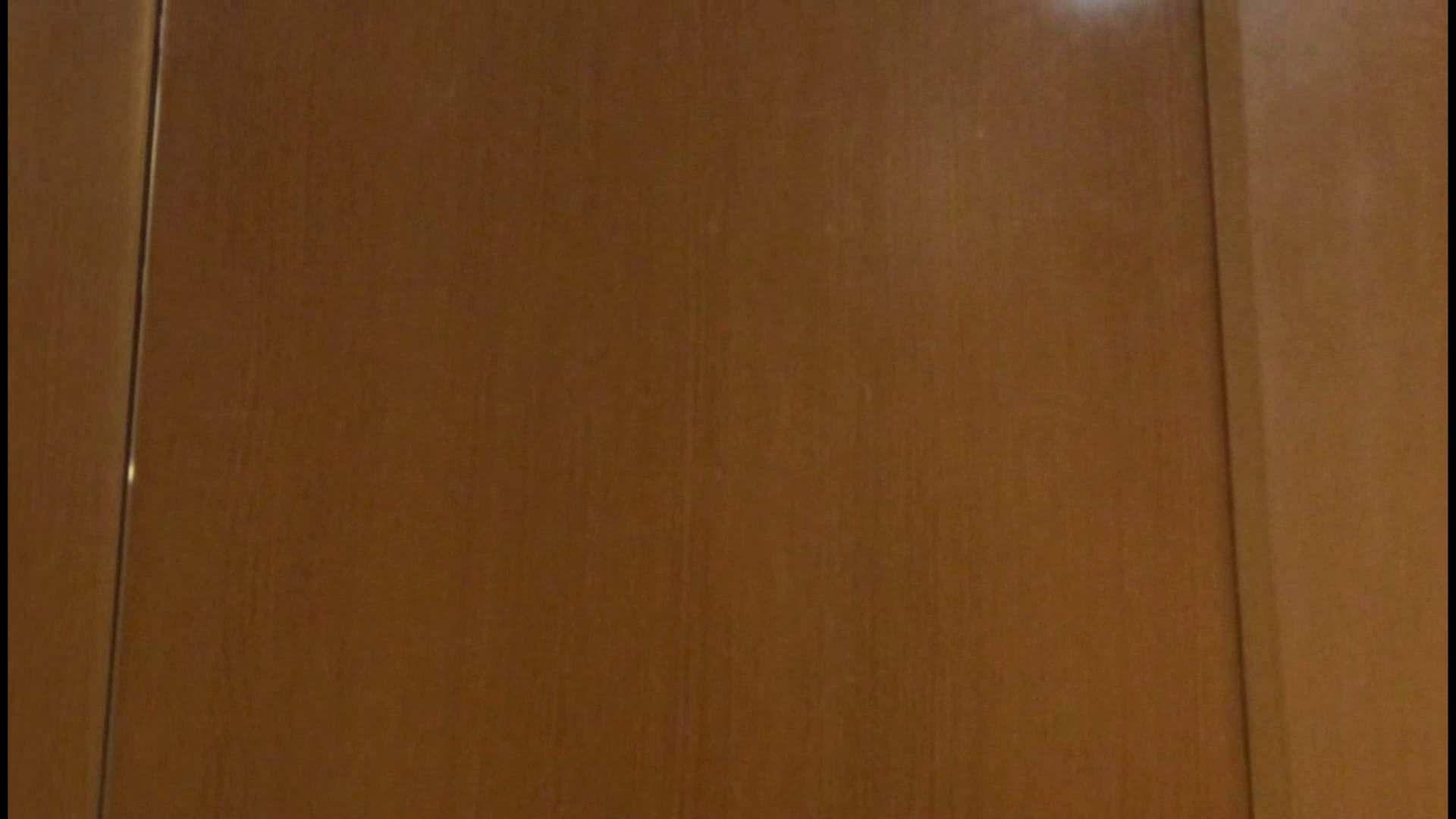 「噂」の国の厠観察日記2 Vol.08 OLハメ撮り  111Pix 20