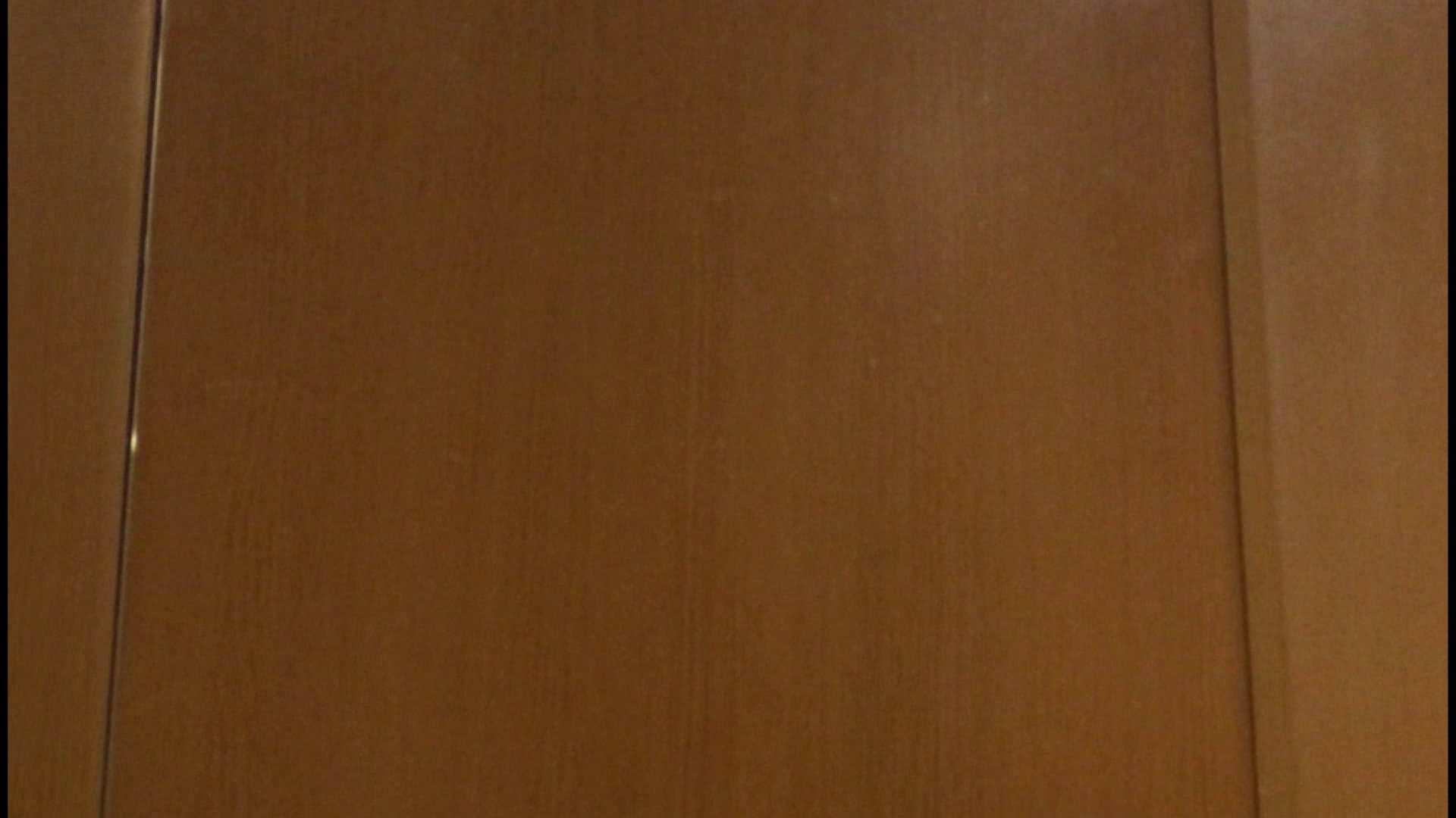 「噂」の国の厠観察日記2 Vol.08 OLハメ撮り  111Pix 22