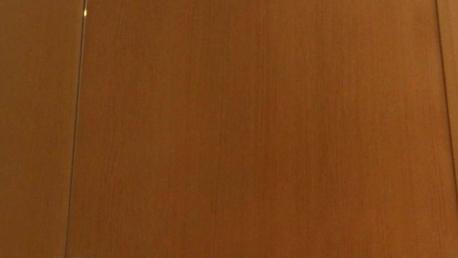 「噂」の国の厠観察日記2 Vol.08 OLハメ撮り  111Pix 79