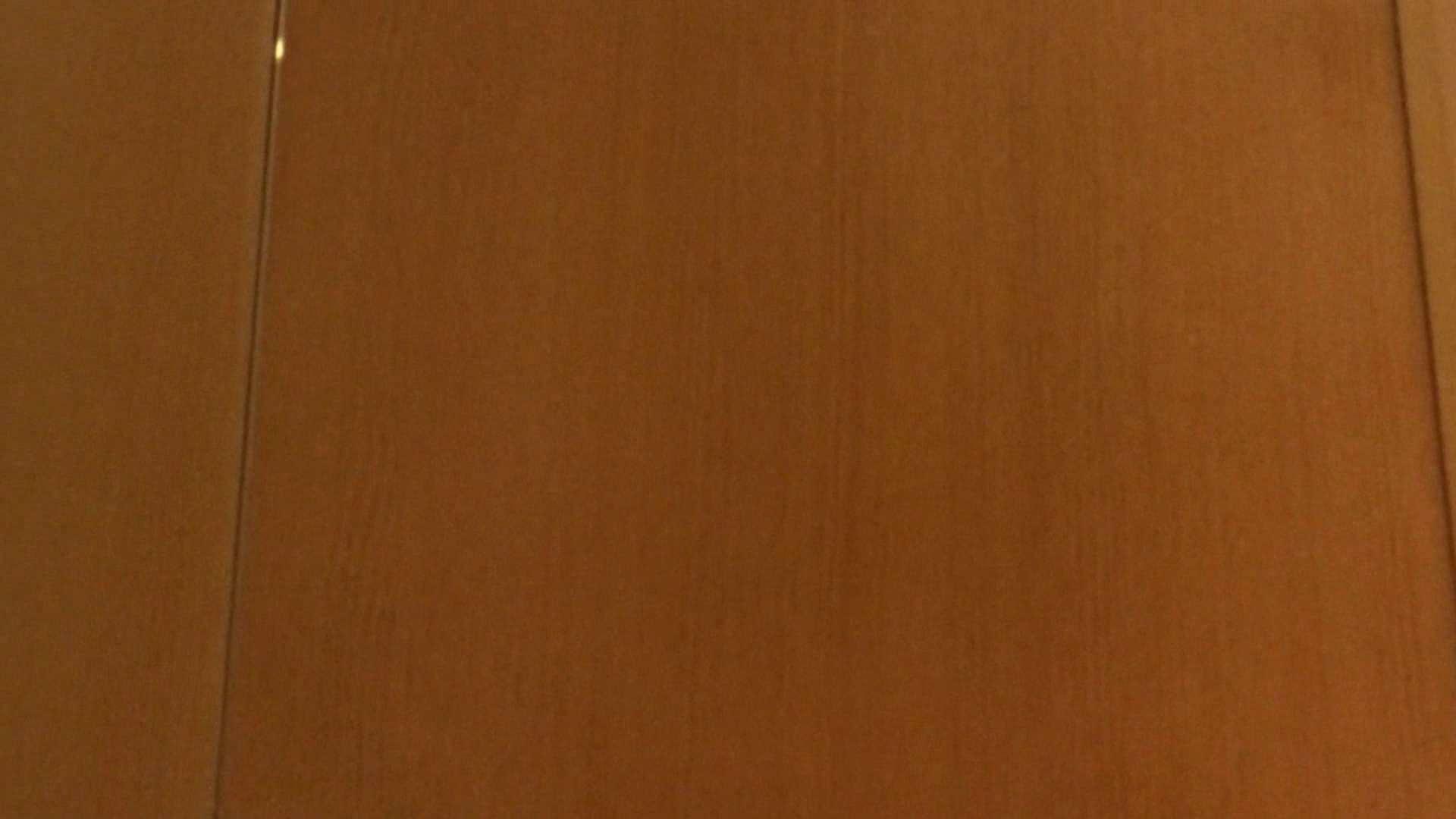 「噂」の国の厠観察日記2 Vol.08 OLハメ撮り  111Pix 81