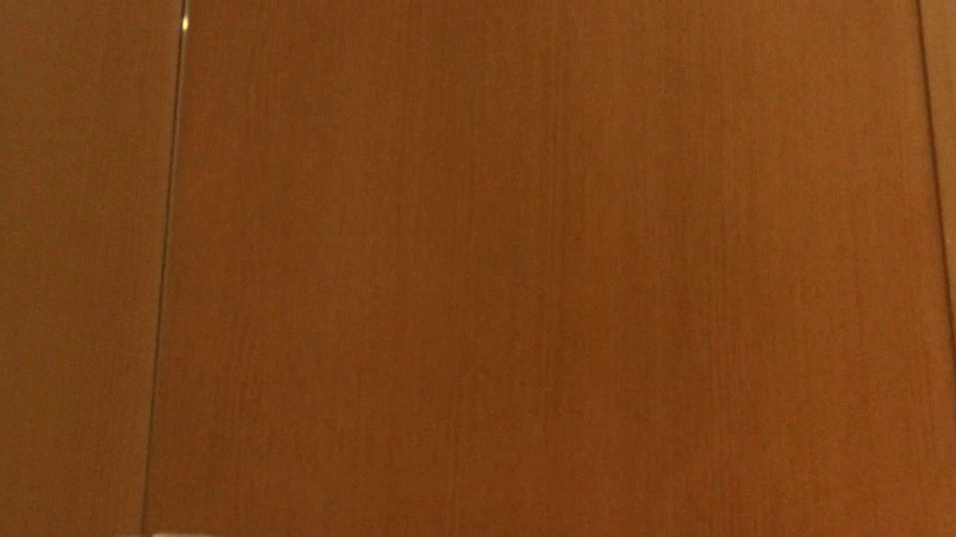 「噂」の国の厠観察日記2 Vol.08 OLハメ撮り  111Pix 83