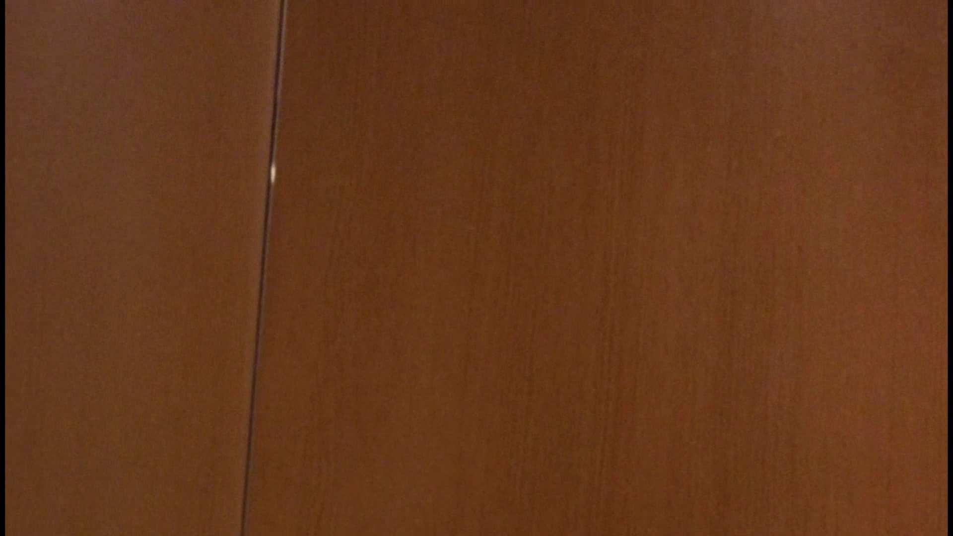 「噂」の国の厠観察日記2 Vol.08 OLハメ撮り  111Pix 90