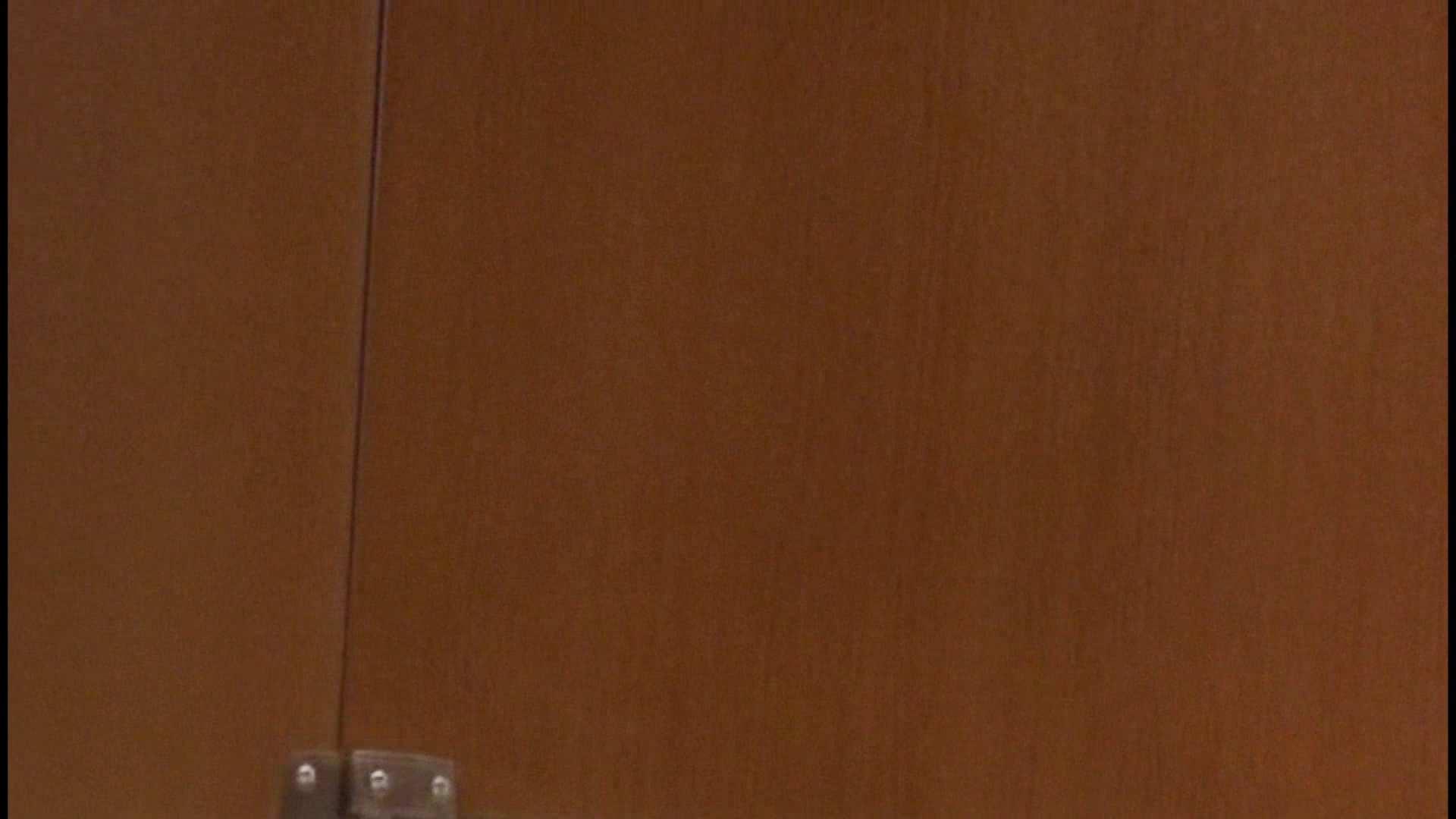 「噂」の国の厠観察日記2 Vol.08 OLハメ撮り  111Pix 92