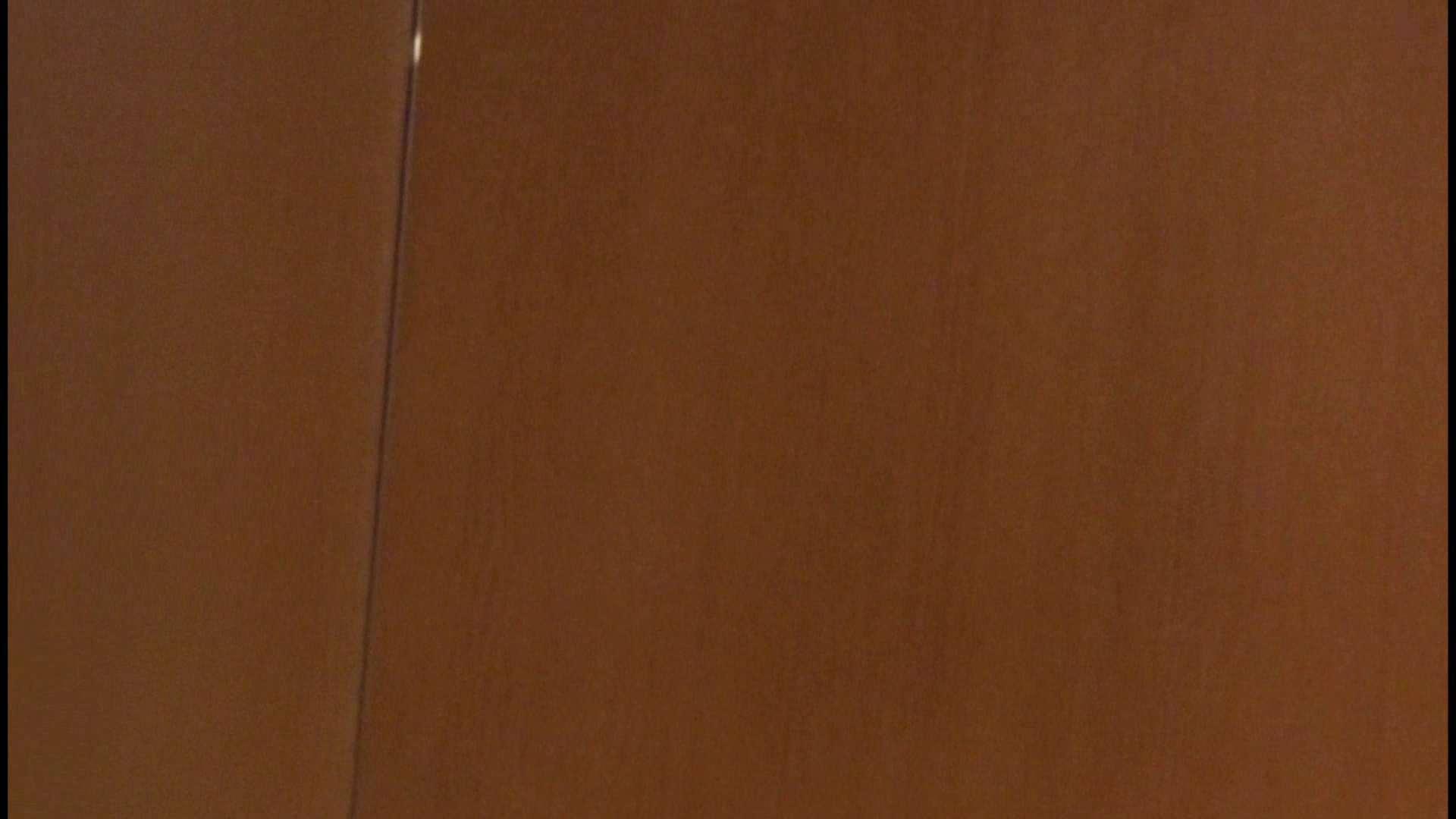 「噂」の国の厠観察日記2 Vol.08 OLハメ撮り  111Pix 100