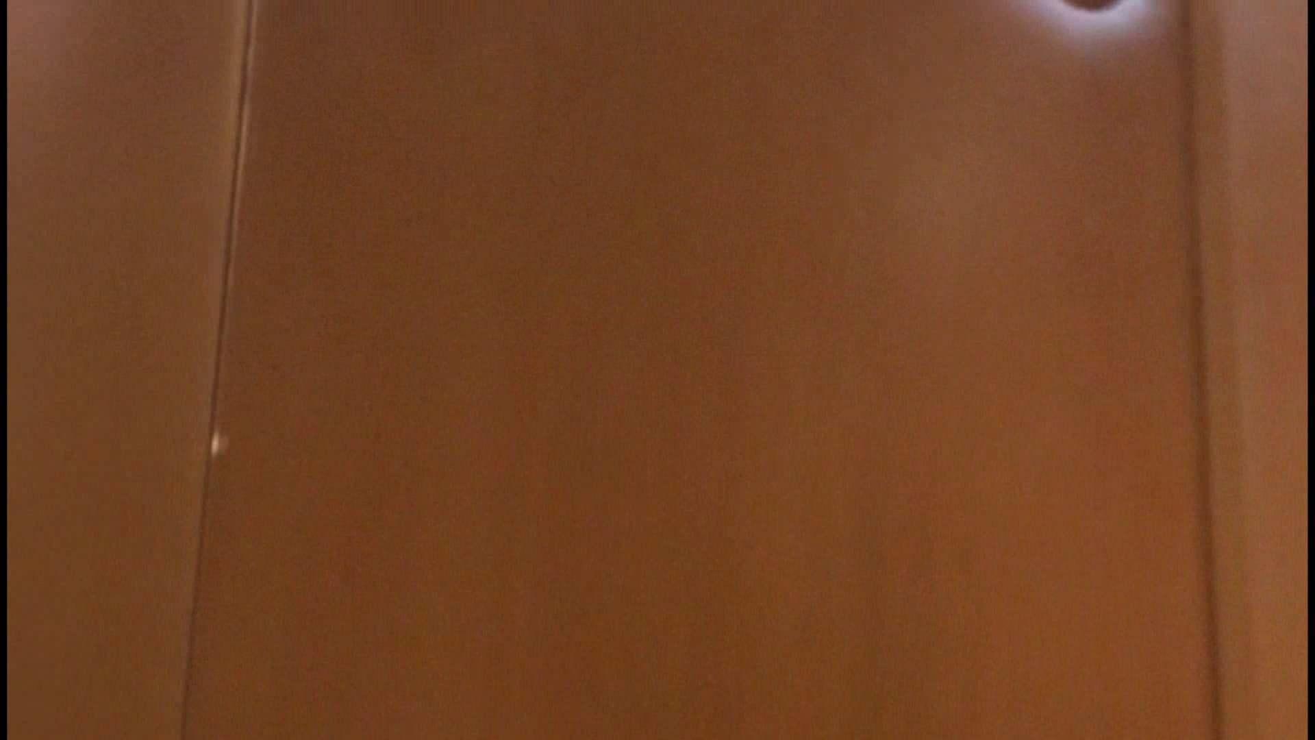 「噂」の国の厠観察日記2 Vol.08 OLハメ撮り  111Pix 101