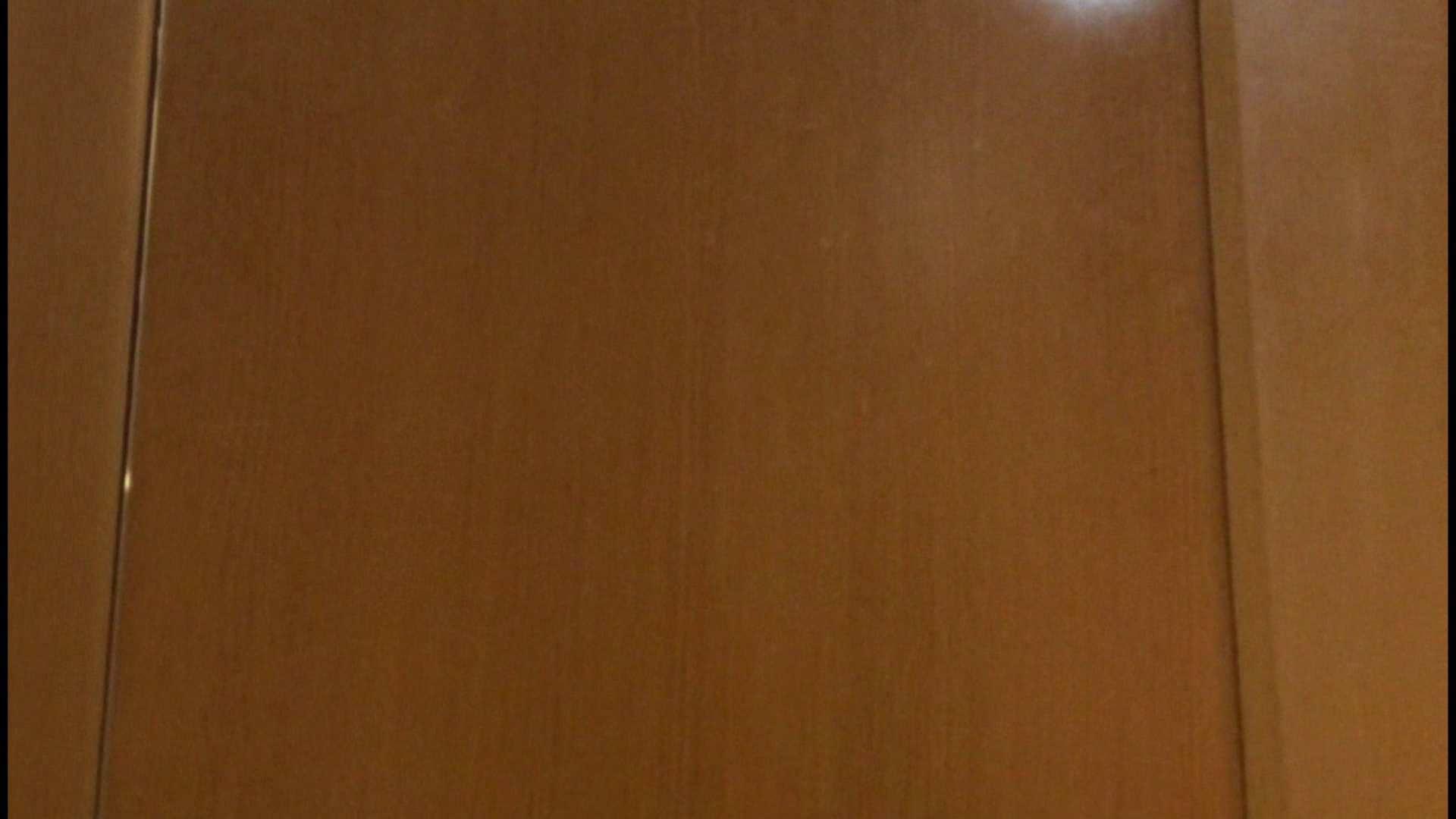 「噂」の国の厠観察日記2 Vol.08 OLハメ撮り  111Pix 109