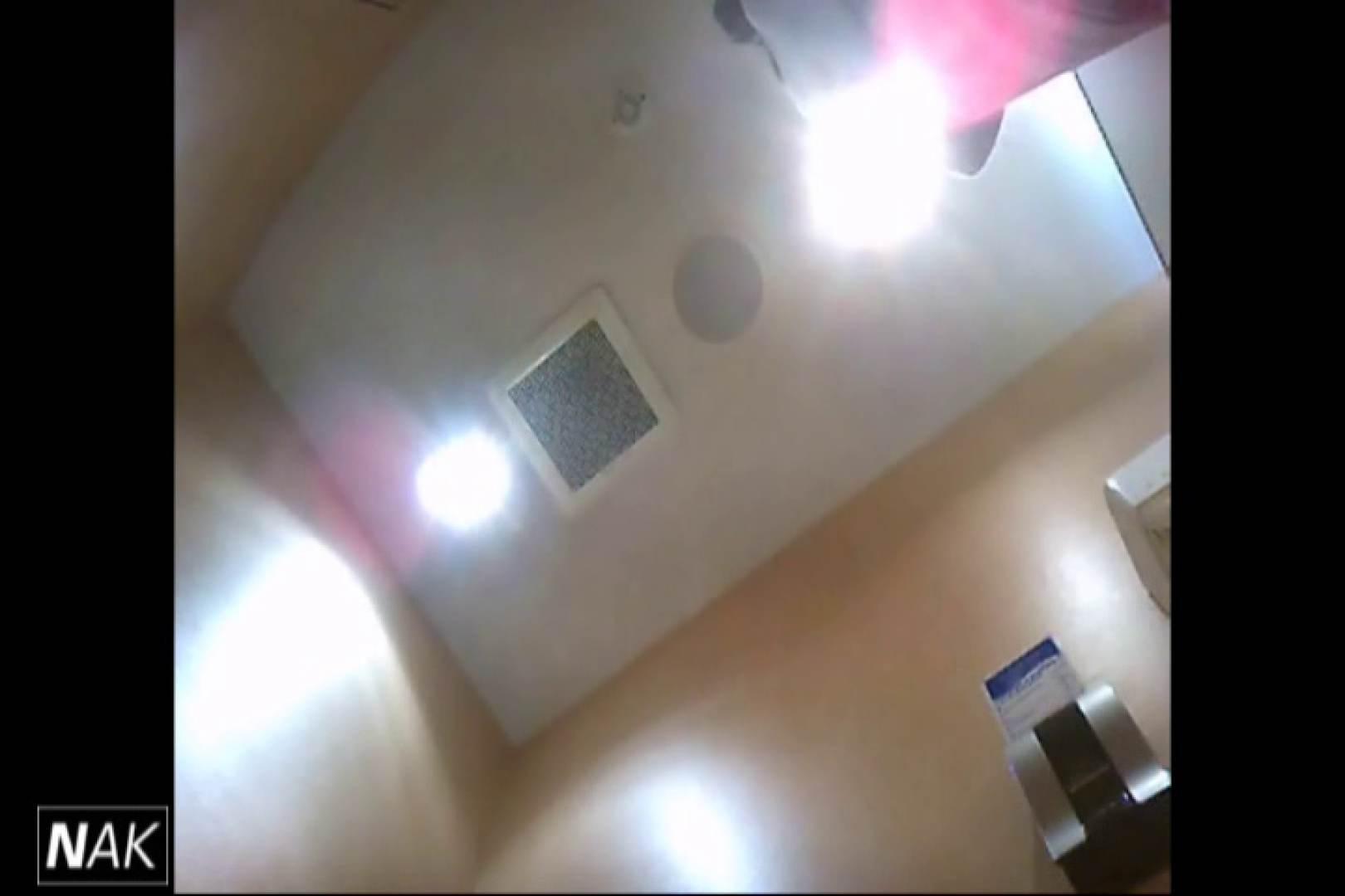 せん八さんの厠観察日記!2点監視カメラ 高画質5000K vol.17 高画質  37Pix 17
