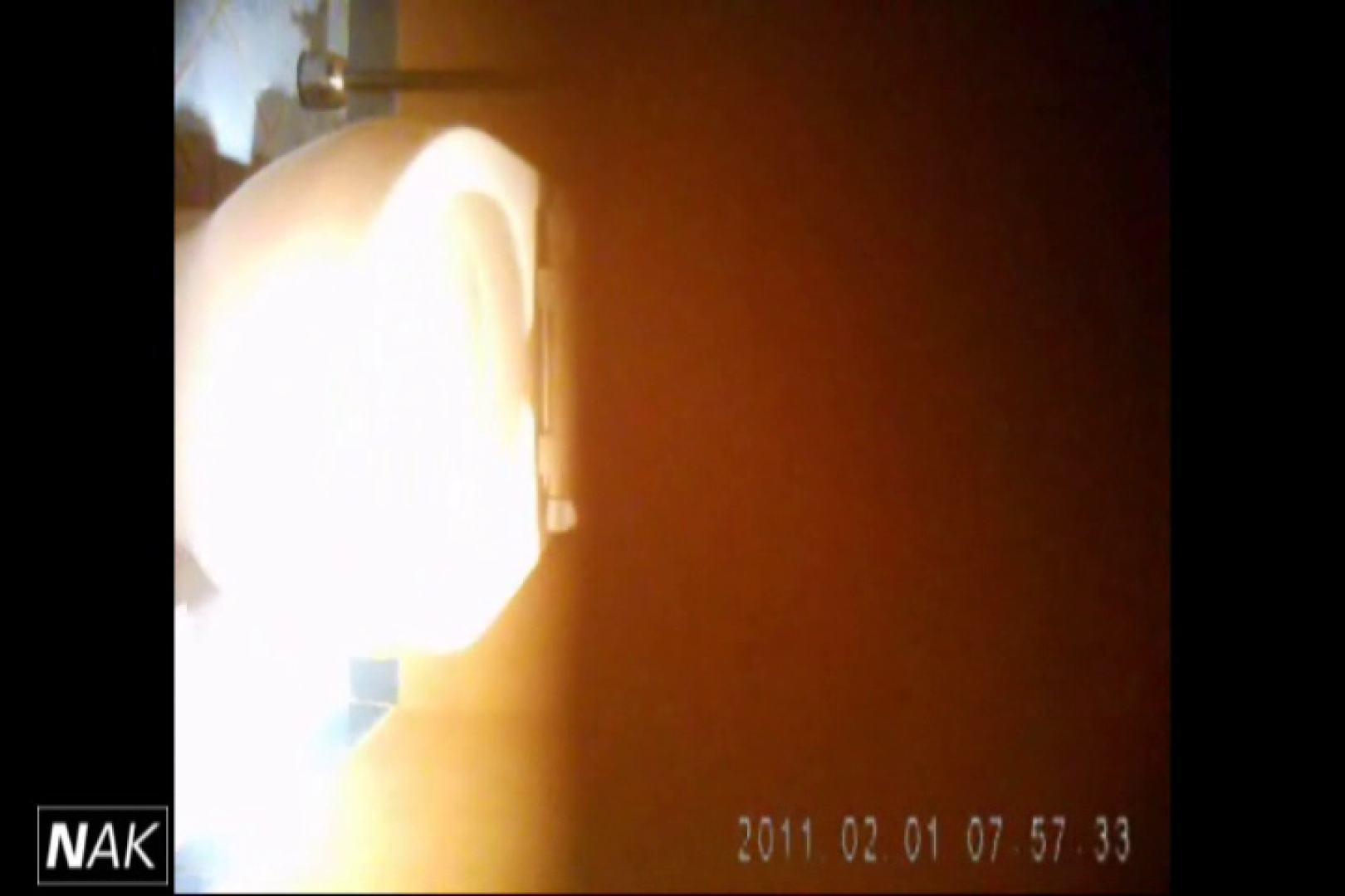 せん八さんの厠観察日記!2点監視カメラ 高画質5000K vol.01 お姉さんハメ撮り  109Pix 78