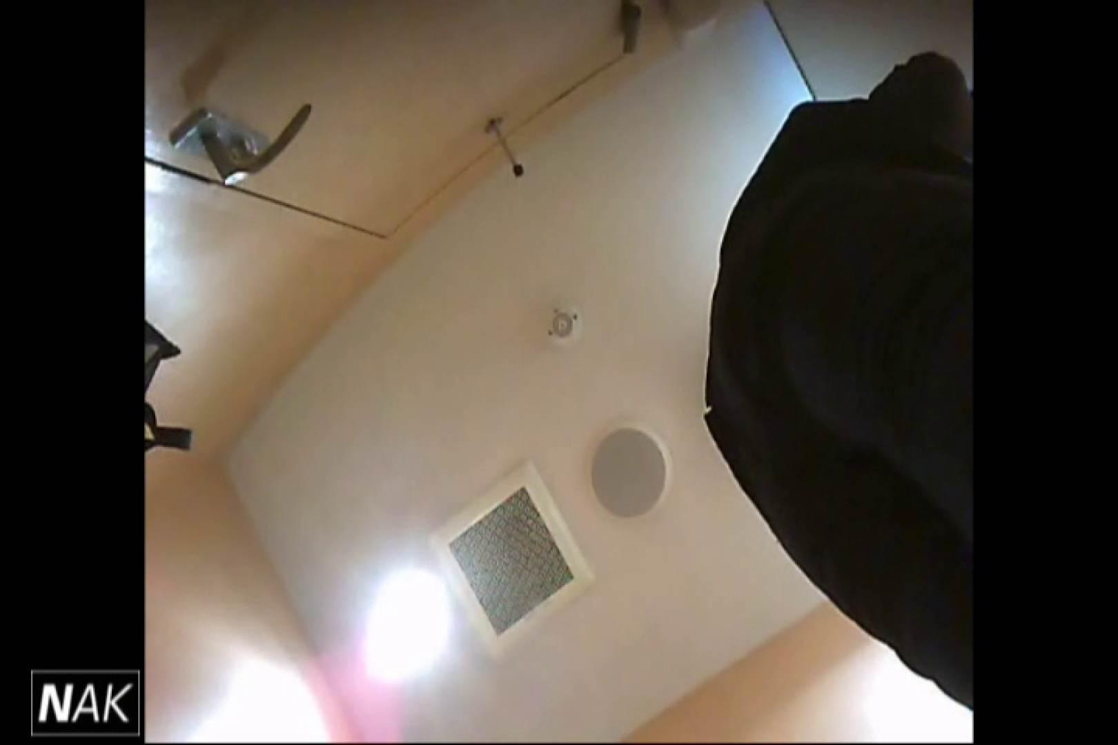 せん八さんの厠観察日記!2点監視カメラ 高画質5000K vol.01 お姉さんハメ撮り  109Pix 96