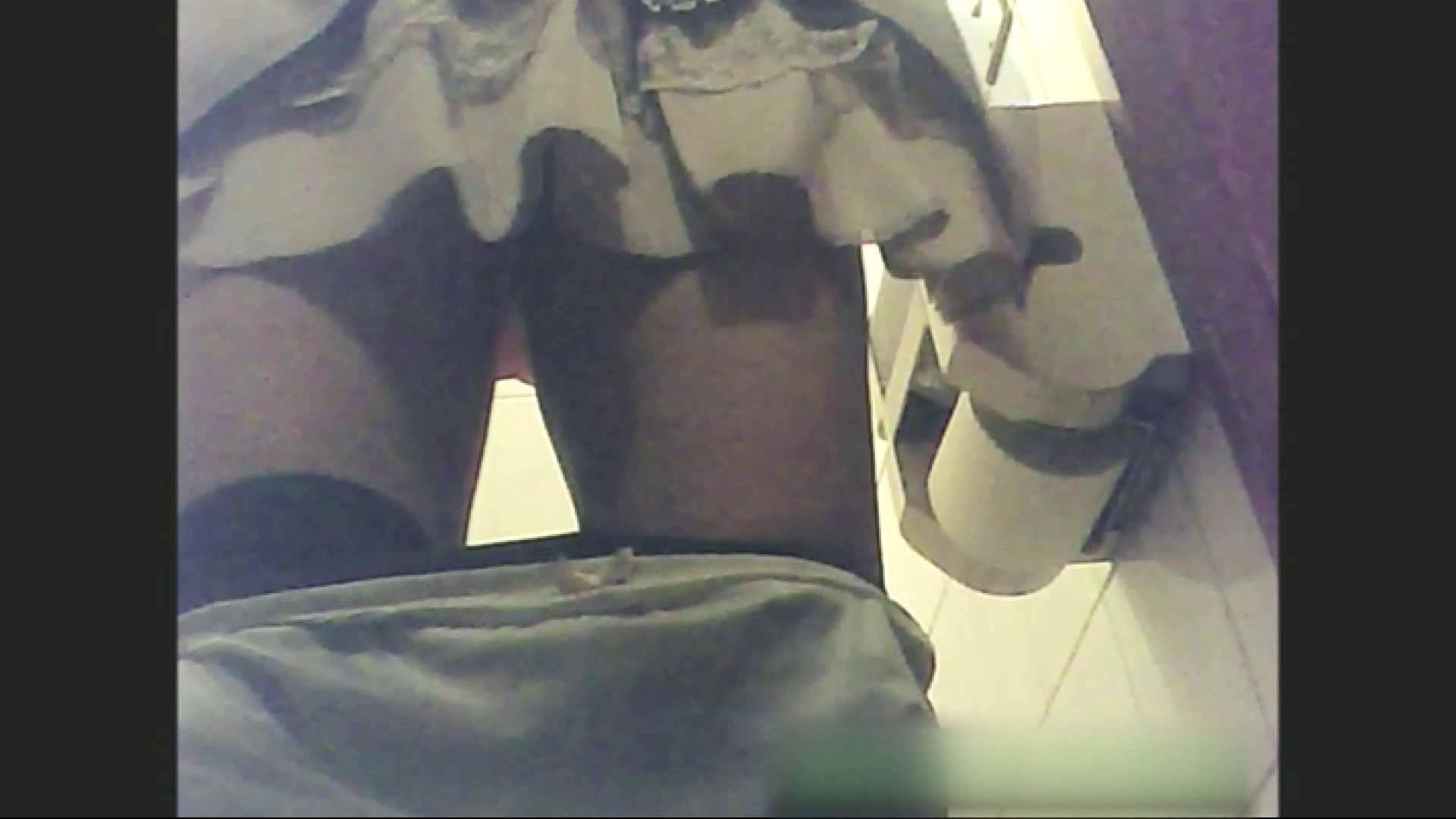 ティーンガールのトイレ覗き‼vol.06 お姉さんハメ撮り  66Pix 15
