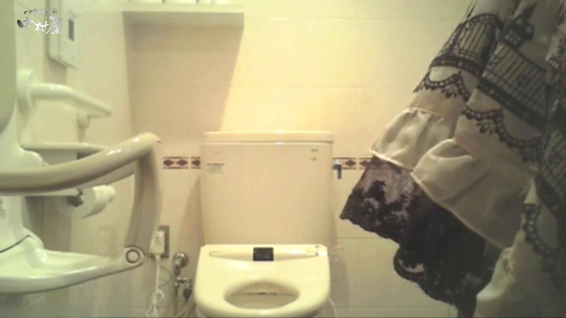 ティーンガールのトイレ覗き‼vol.15 OLハメ撮り  25Pix 14