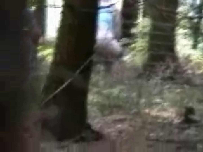 白人さんの野外排せつ盗撮vol.2 ギャルハメ撮り  87Pix 32