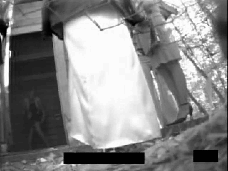 白人さんの野外排せつ盗撮vol.2 ギャルハメ撮り  87Pix 41
