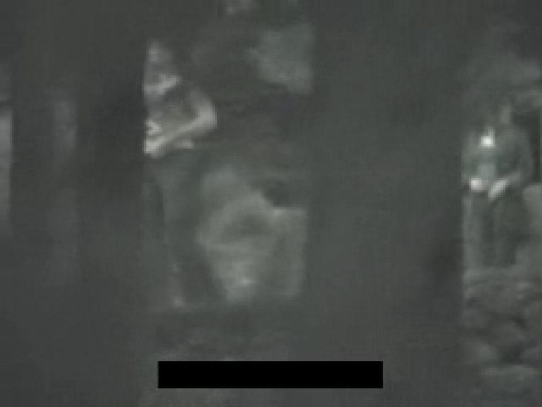 白人さんの野外排せつ盗撮vol.2 ギャルハメ撮り  87Pix 61
