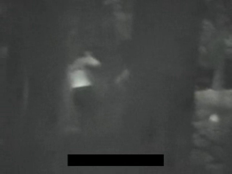 白人さんの野外排せつ盗撮vol.2 ギャルハメ撮り  87Pix 65