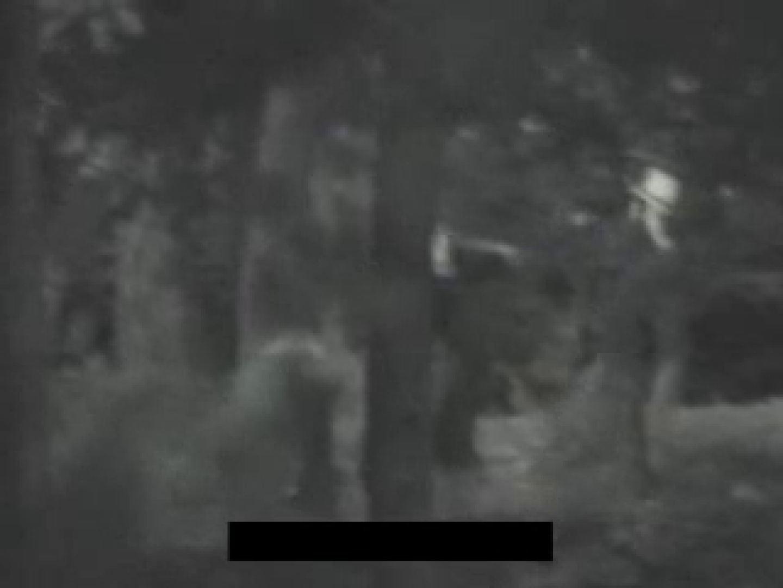 白人さんの野外排せつ盗撮vol.2 ギャルハメ撮り  87Pix 67