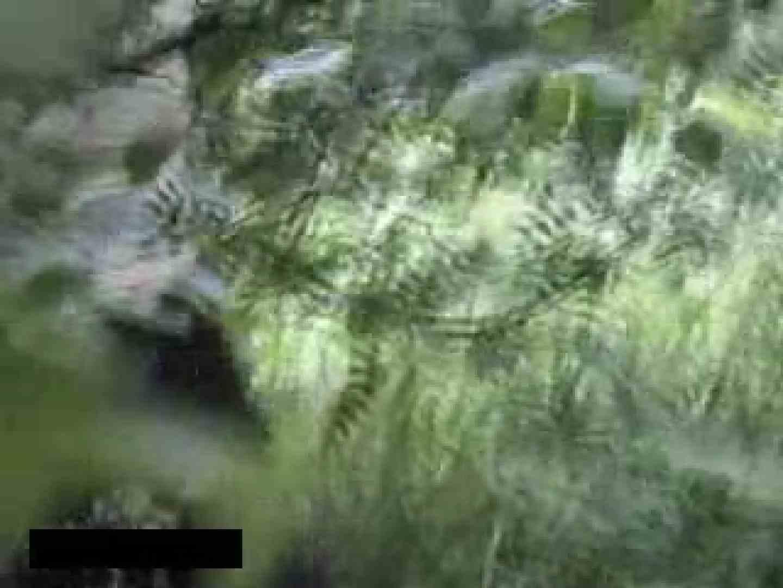 白人さんの野外排せつ盗撮vol.2 ギャルハメ撮り  87Pix 70
