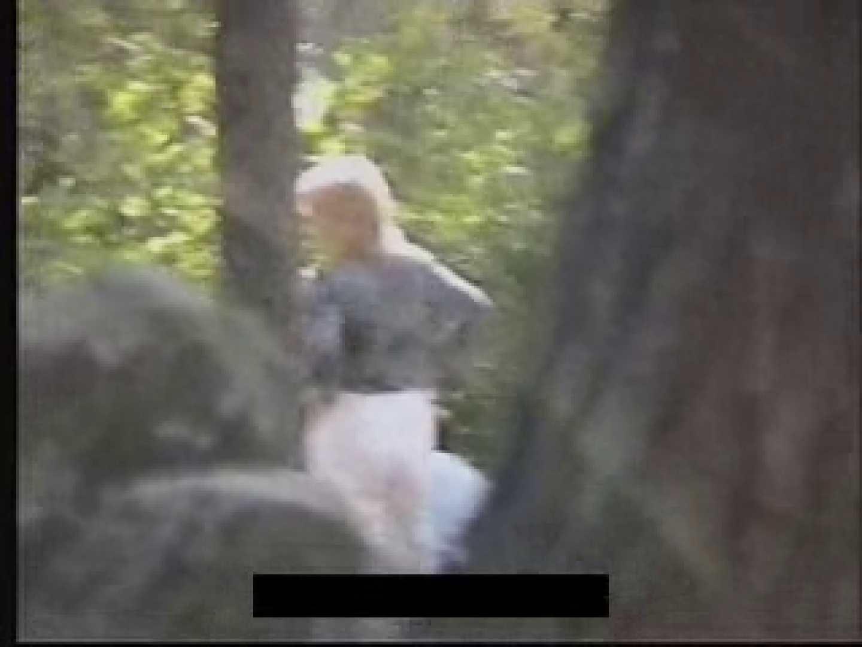 白人さんの野外排せつ盗撮vol.2 ギャルハメ撮り  87Pix 77