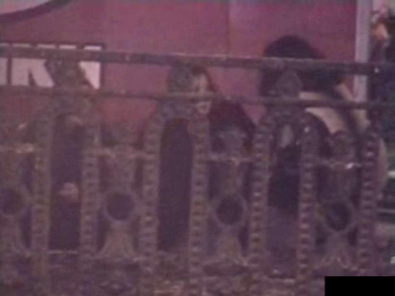 白人さんの野外排せつ盗撮vol.2 ギャルハメ撮り  87Pix 85